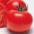 Tomato normal