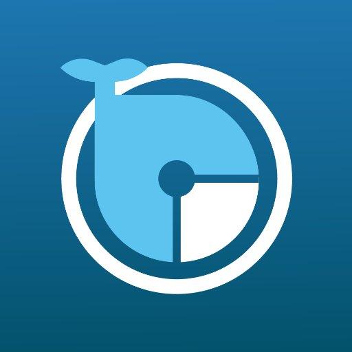 ₿ WhaleAgent   Crypto ₿