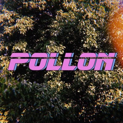El pollon k