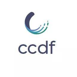 cfb25b128afc CCDF-FCDC ( CCDFFCDC)
