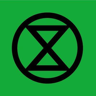 Image result for extinction rebellion logo