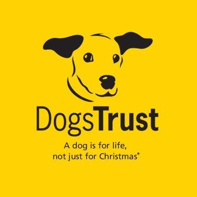 DogsTrust Darlington