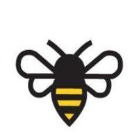 BHIVE Redskins Bee