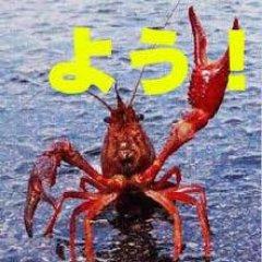 crayfish0316