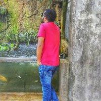 ramzan_romeo
