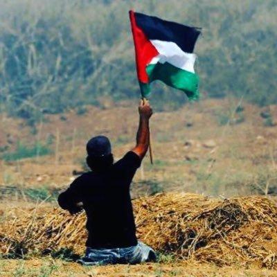 🇵🇸  Free Palestine Initiative  🇵🇸