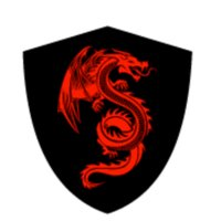 Red Dragon Protection Corp.