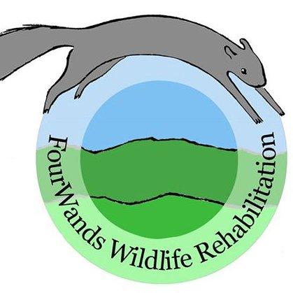 FourWands Wildlife Profile Image