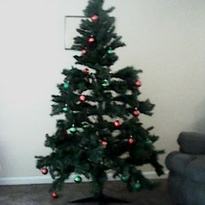 mark's tree (@markrendhaw313) Twitter profile photo