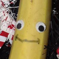 Hungry Banana