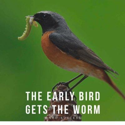 Early Bird Tags 🦅