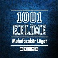 1001kelime