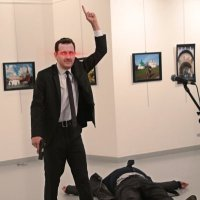 White Assad