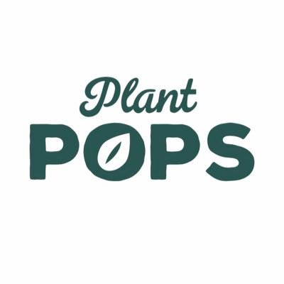 Plant Pops - Popped Lotus Seeds