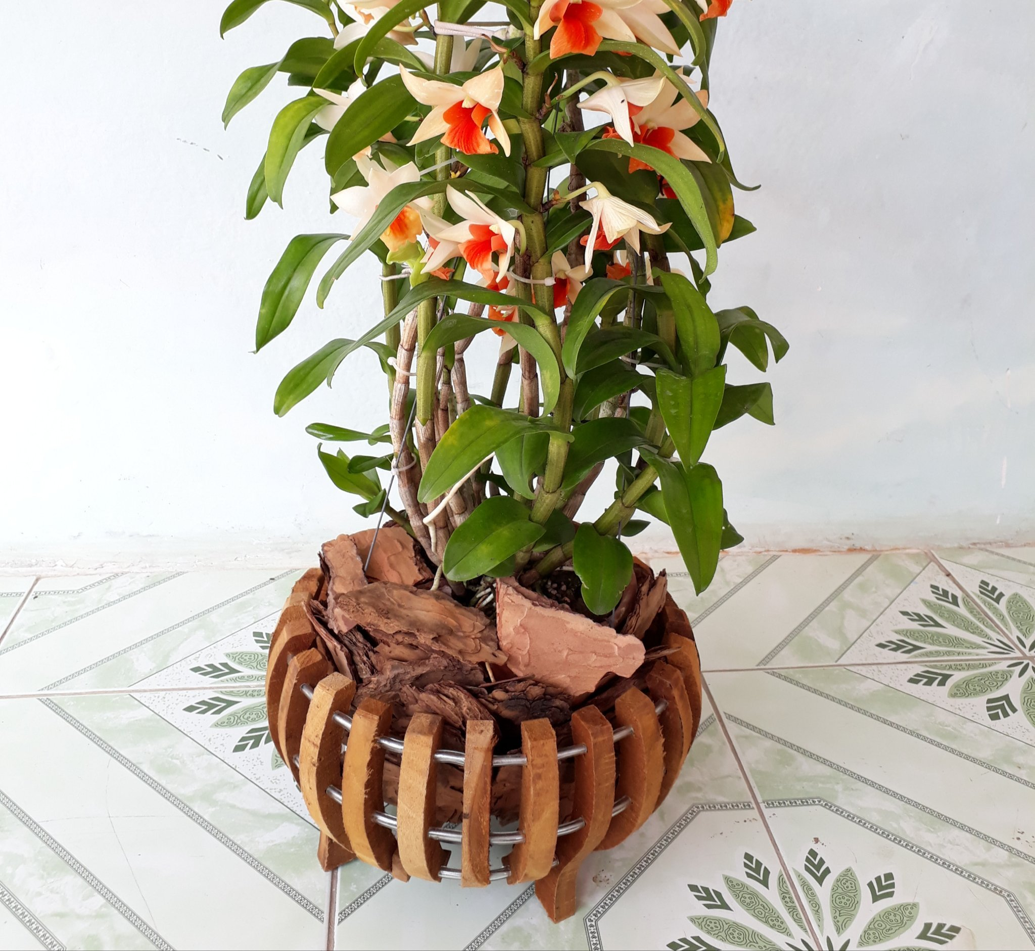 Wooden Baskets To Plant Orchids At Woodenbaskets Twitter