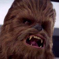 Angry Chewbacca