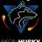 Neon Husky