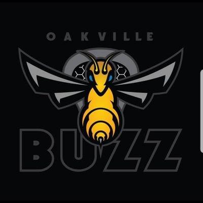Oakville Buzz Buzzthehive Twitter