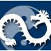 The Dragon's List Avatar