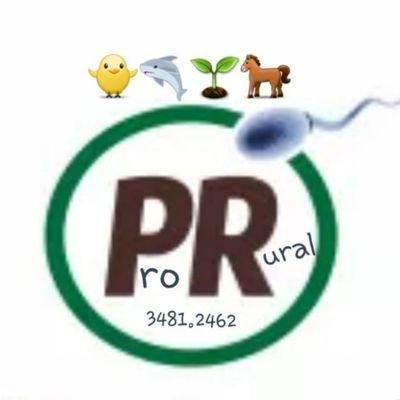 ProRural_Rondonia