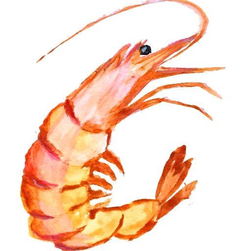 Start Your Own Shrimp Farm