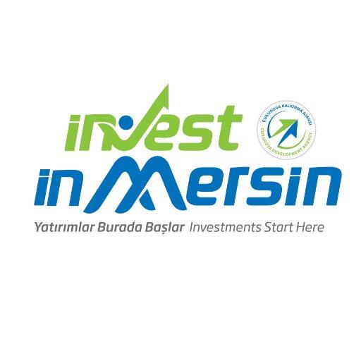 investinmersin