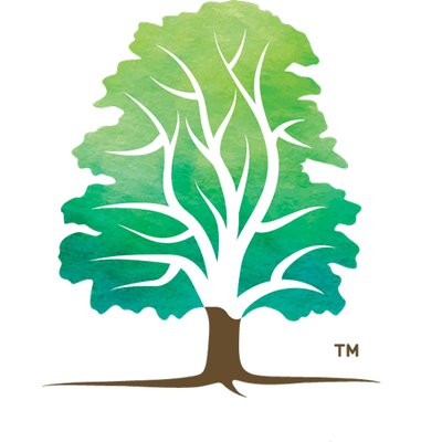 Arboricultural Association on Twitter: