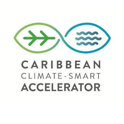 Caribbean Accelerator (@ccs_accelerator) Twitter profile photo
