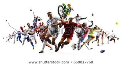 Le sportif quotidien