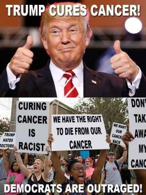 Image result for trump derangement syndrome memes