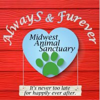 Always and Furever Midwest Animal Sanctuary