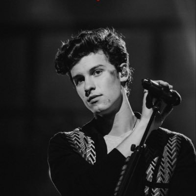 The Art of Shawn Mendes 🌹