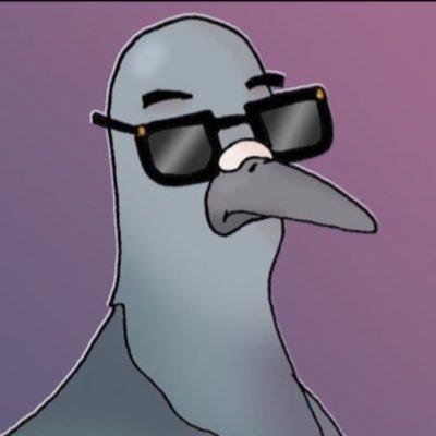 decent pigeon (@decentbirthday )