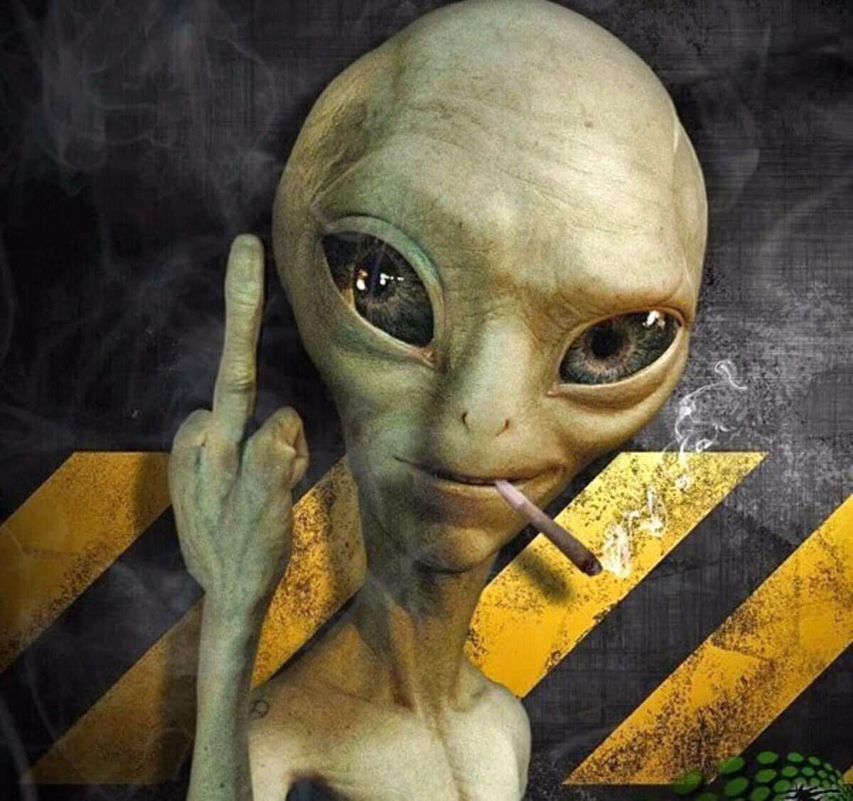 Прикольные картинки инопланетянин