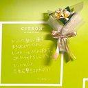 ctctctron
