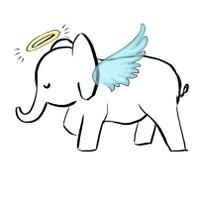Angels for Elephants