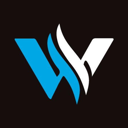 Webixoft Solution
