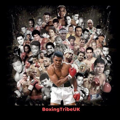 BoxingTribeUK