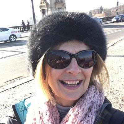 Liz Lewis (@LisabethLewis) Twitter profile photo