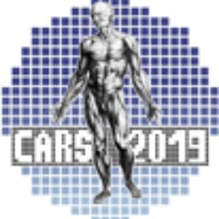CARS2019