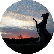 Julie Holloway (@jholloway706) Twitter profile photo