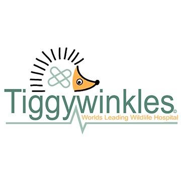Tiggywinkles