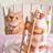 Laura@2/22猫スイーツbook発売