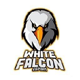White Falcon E Sport Percuma Jago Tapi Nggak Ganteng Denger Tu Guys Kalau Masih Smk Mending Buat Aov Aja Siap Kapt Kahono97 Wf Whitefalcon Wfspreadyourwings Esport Aov Aovindo