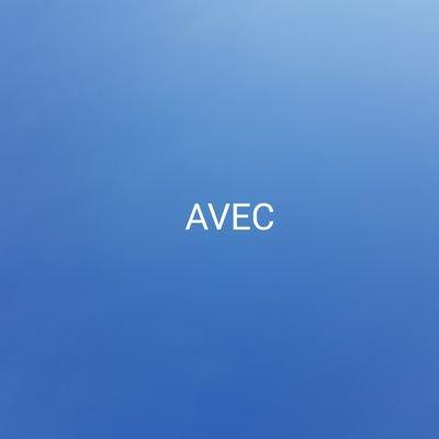 Cabinet AVEC