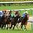 【公式】競馬好きのための暇つぶし動画