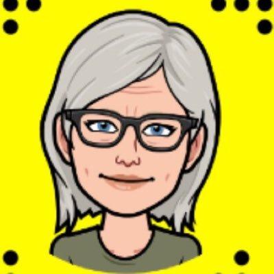 Birte L Nielsen
