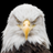 TodaysBaldEagle's avatar'