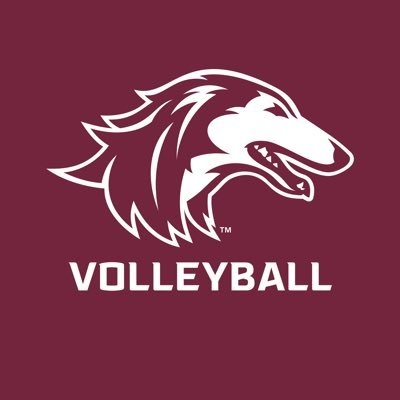 Official Twitter account of the @SIUSalukis volleyball team. Go #Salukis!