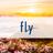 Fly_club